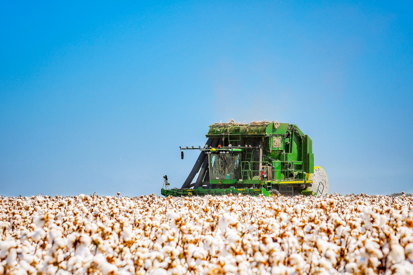 Cream of the crop rural photographers thank a farmer auctionsplus (5)