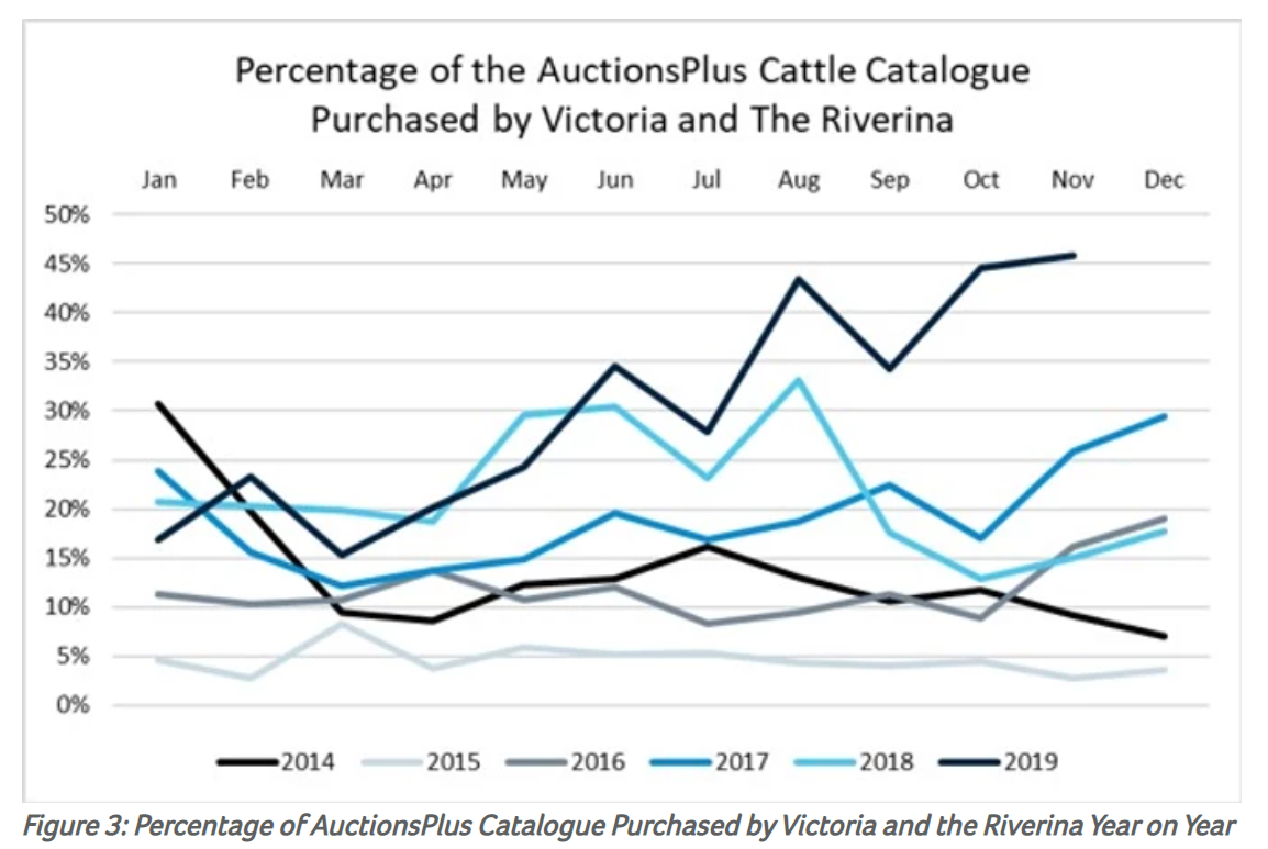 Does the future of Australia's cattle herd hinge on Victoria and the Riverina 3