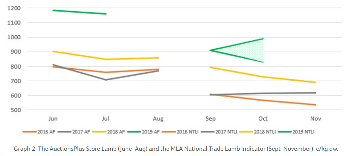 How do Winter lamb prices compare to slaughter prices in Spring 2