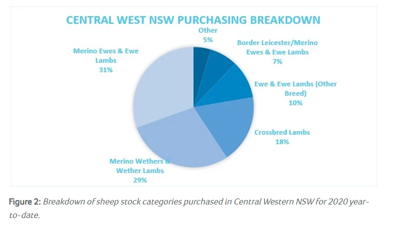 Sheep movements in the Central West of NSW 2