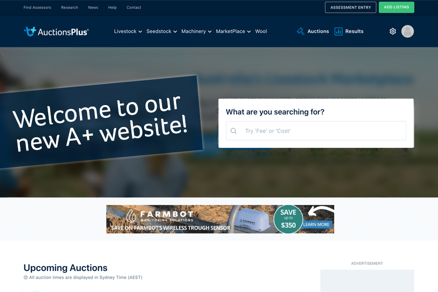 Welcome to our New AuctionsPlus Website