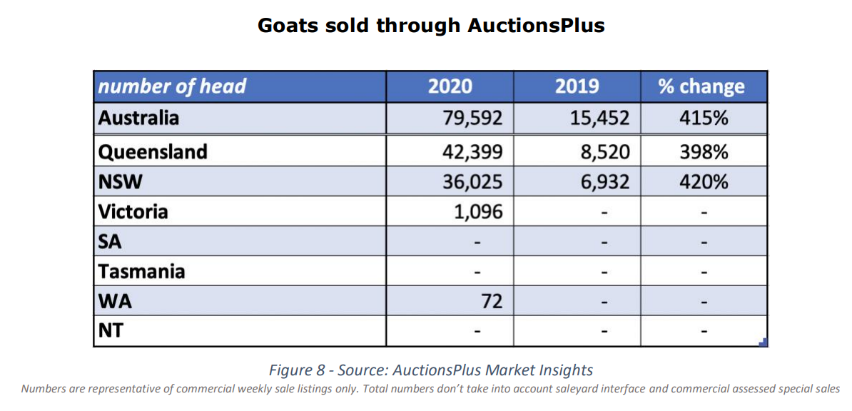 cattle sold through auctionsplus 8 PNG