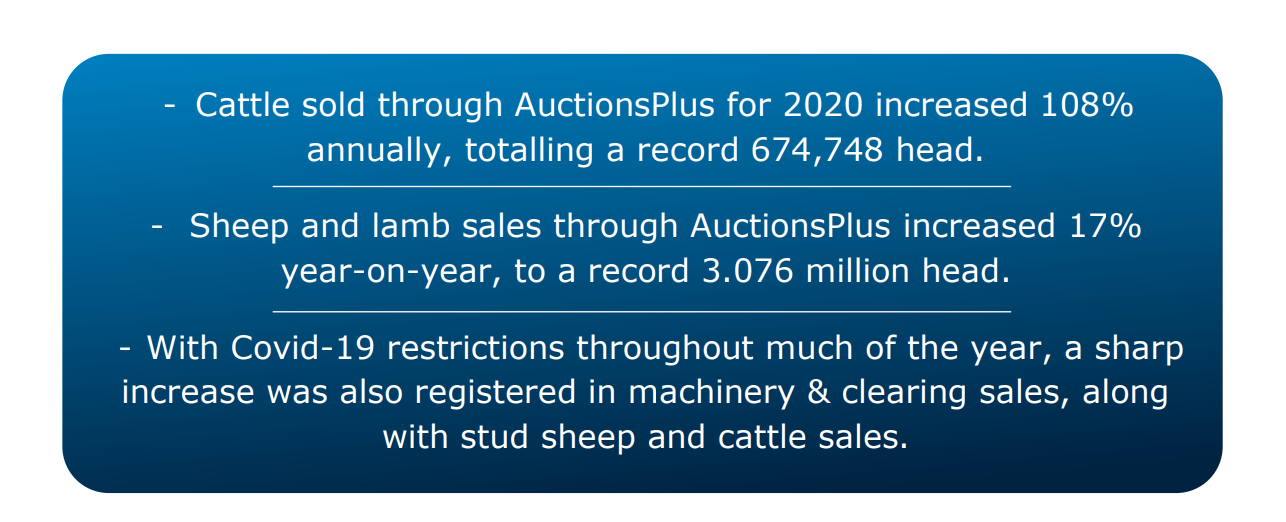 cattle sold through auctionsplus first