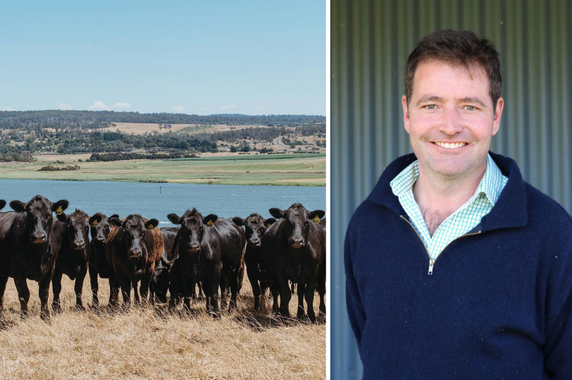 fifth generation farming family flourishing now and into the future auctionsplus landfall angus